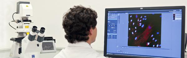 Recherche IBS microscope confocal